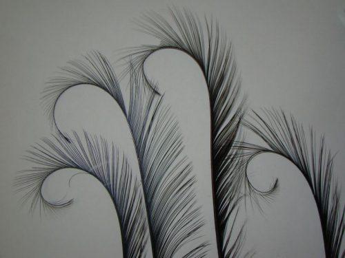 Plumas de Diseño. Especial para Tocados